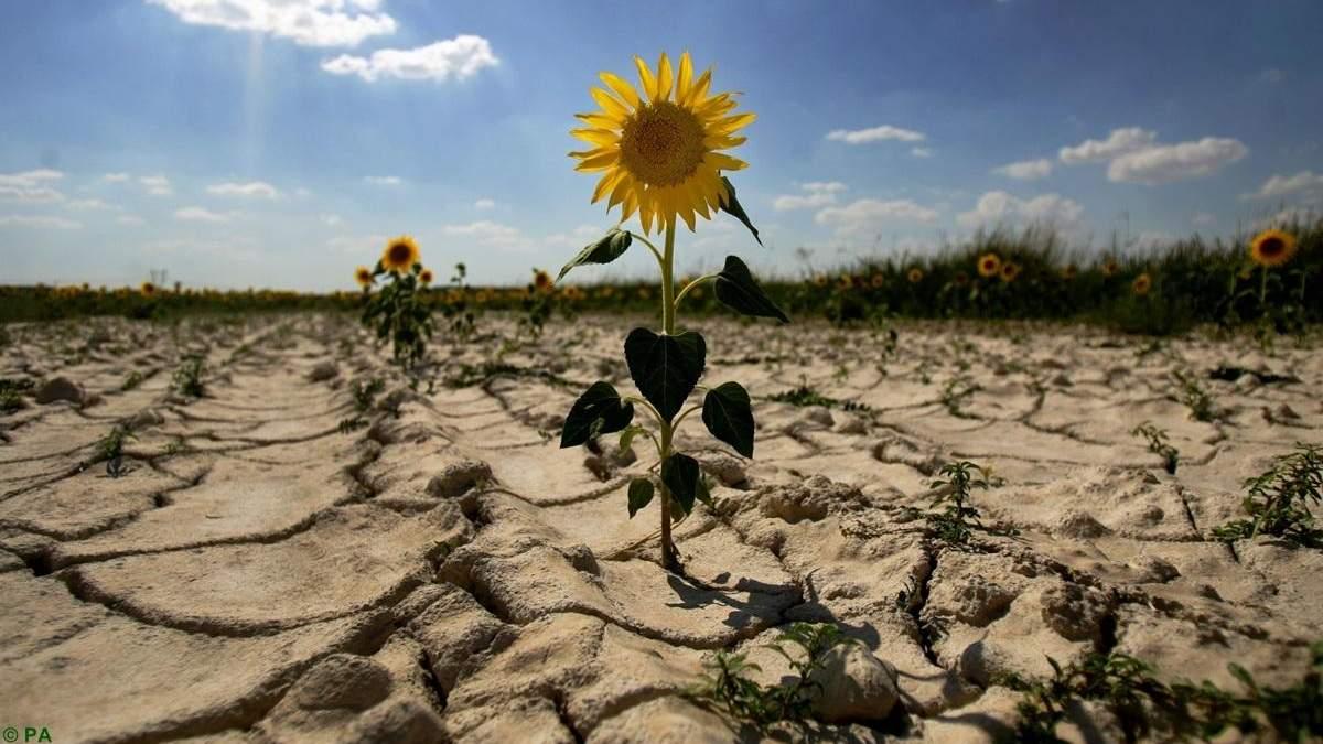 В Україні заявили про загрозу браку води через аномально теплу зиму
