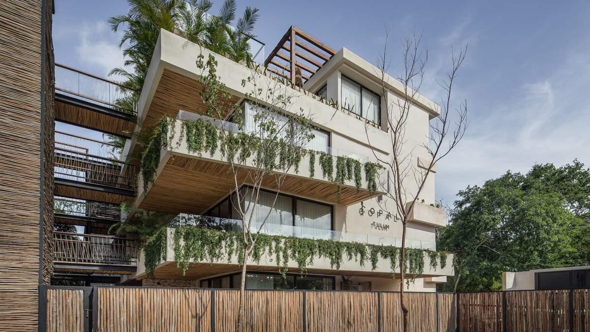 Джунгли в квартире: дружественные к экологии апартаменты построили в Мексике – фото