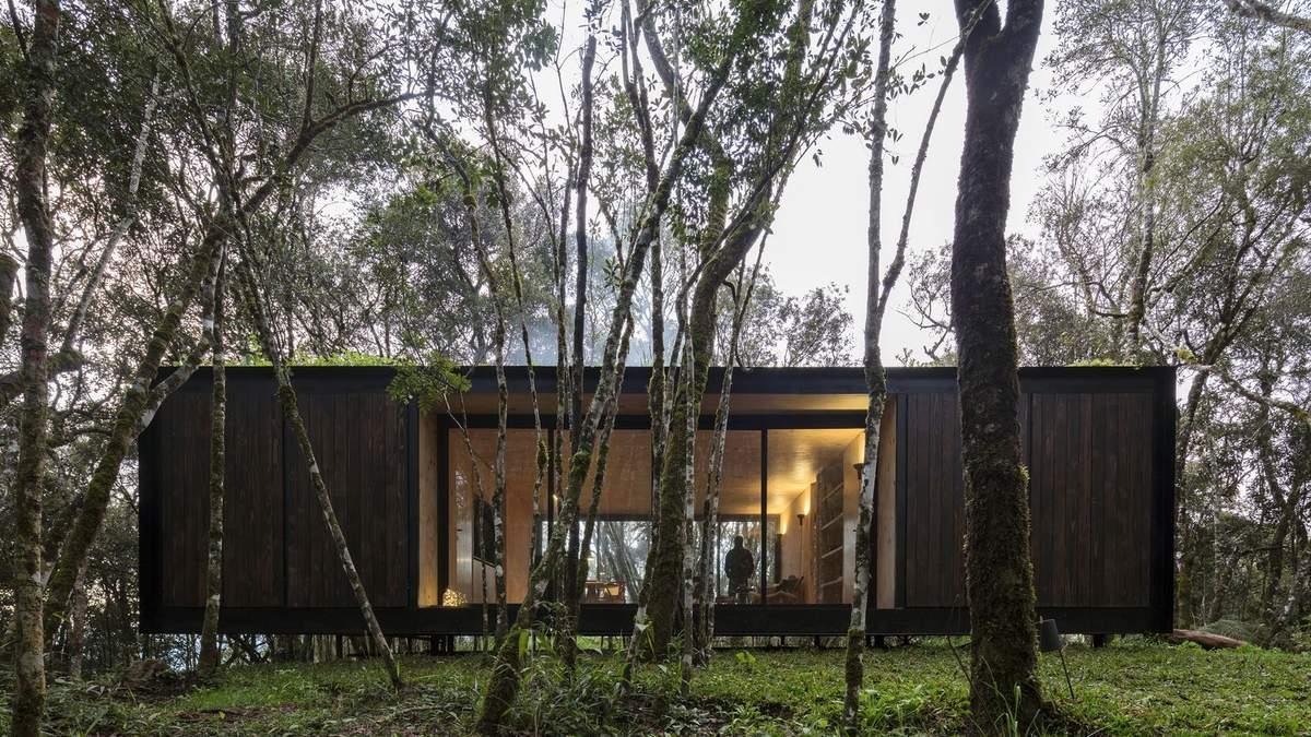 Ідеальне місце для самоізоляції: сучасний дерев'яний будиночок посеред лісу в Бразилії – фото