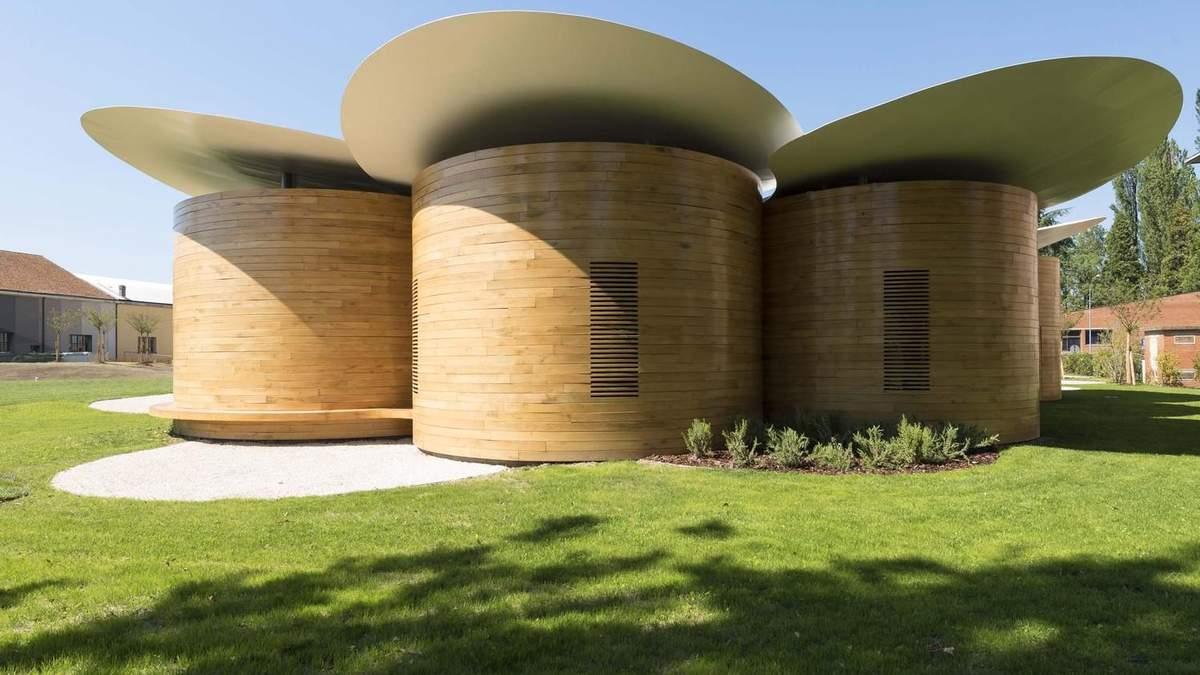 """Пеньки з """"розумними"""" дахами: в Італії побудували дивний концертний зал – фото"""