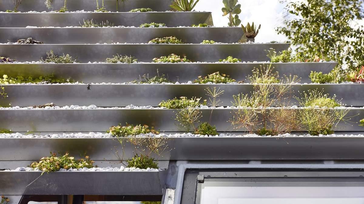 Экологичная пирамида: в Лондоне построили жилье с крышей в виде пирамиды – фото