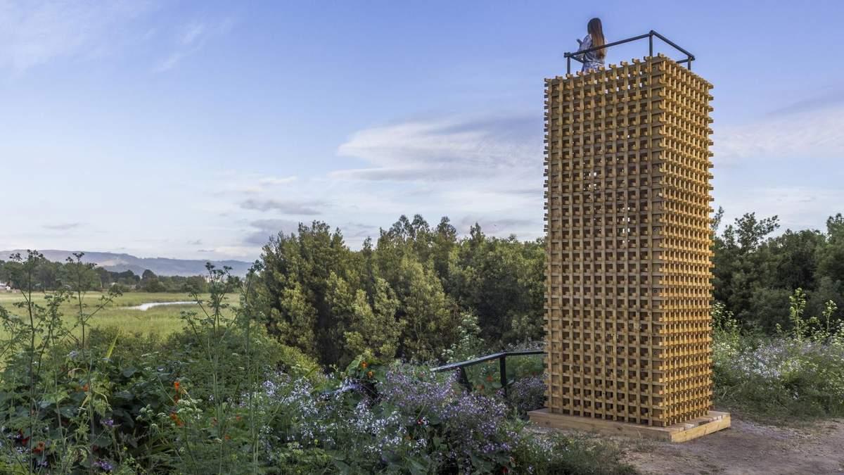 Пустые башни: в Чили построили смотровые башни возле большого болота – фото