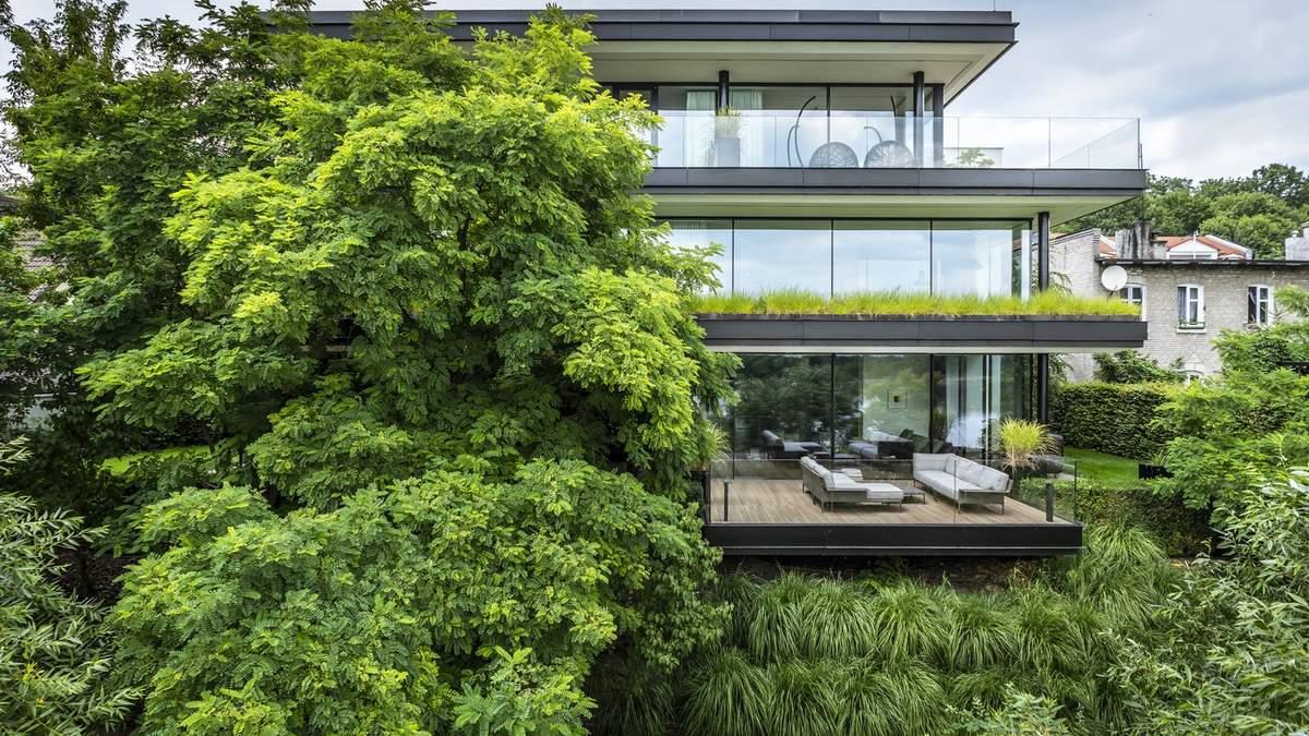 Утоплен в зелень: экологический дом в Торуне с деревьями внутри – фото
