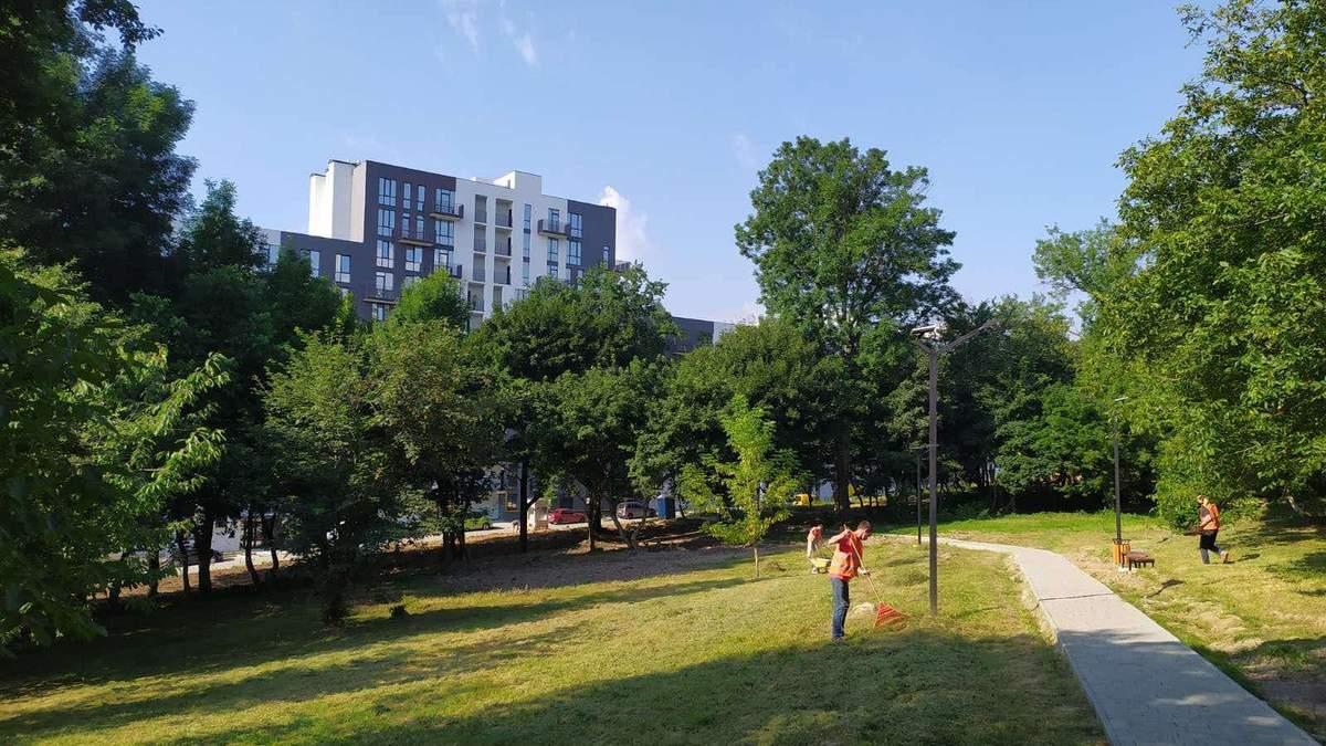 Стиль еко та дерев'яні скульптури: як виглядає новостворений парк у Львові – фото
