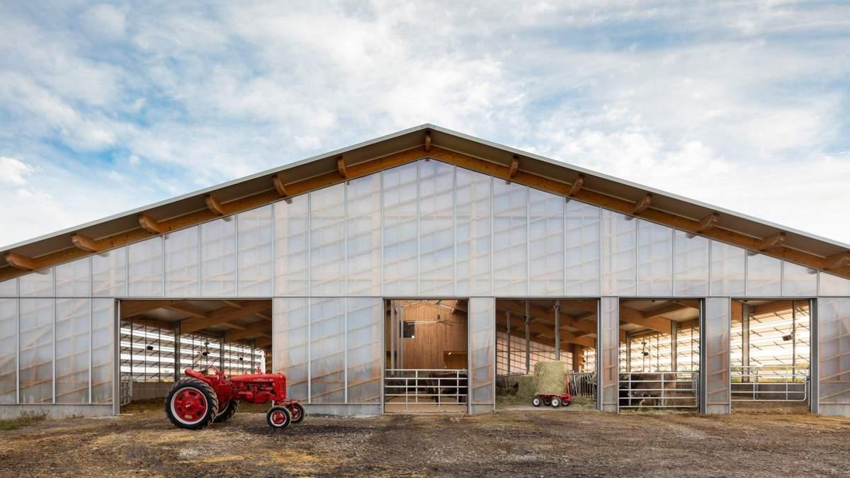 Чтобы сделать жизнь коров лучше: в Канаде спроектировали прозрачный хлев  –  фото
