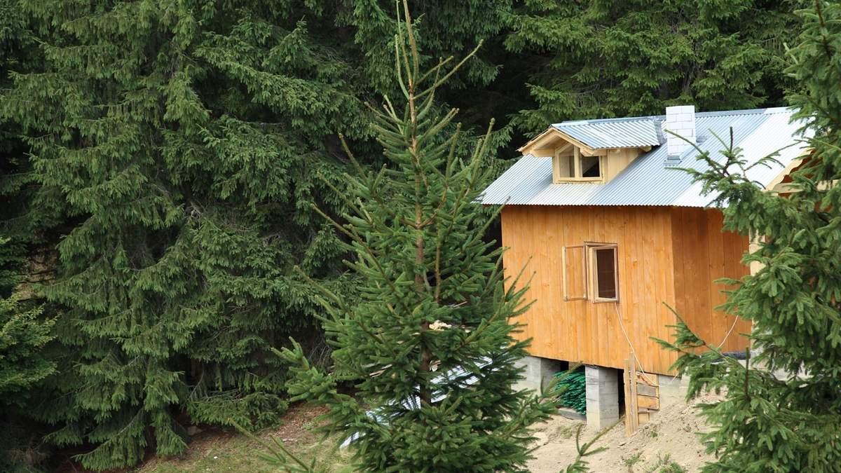 Будиночок в Карпатах – гостьова будівля з видом на Говерлу: фото