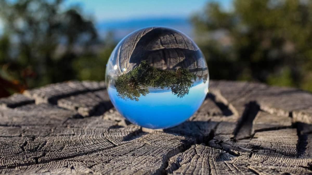 Как в гнезде: в Дании построили комнаты в виде стеклянных шаров среди деревьев – фото
