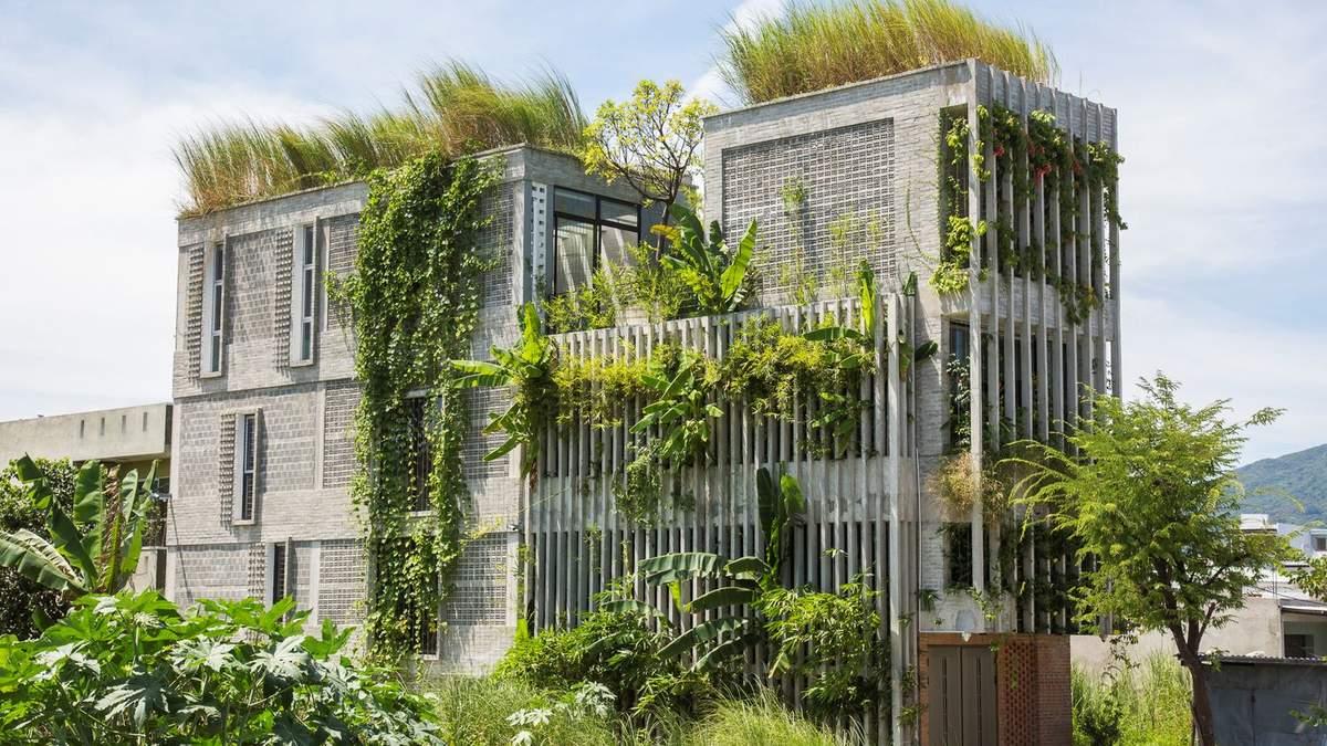Офис в деревне: во Вьетнаме превратили старый бетонный дом в экологический коворкинг – фото