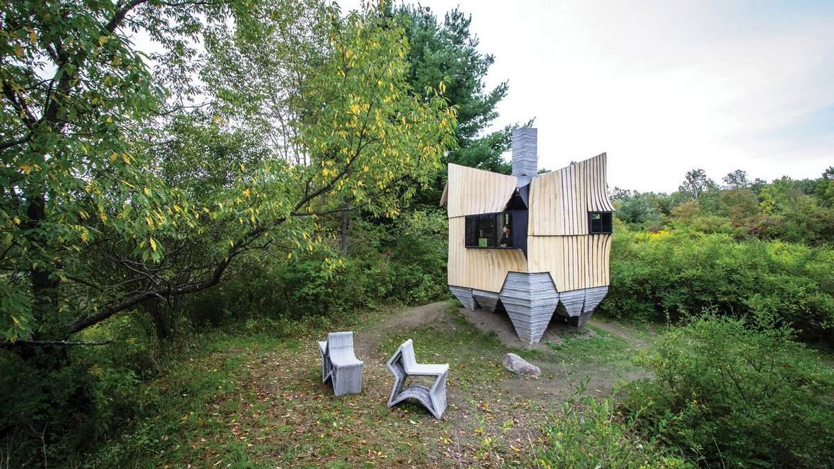 Обшивка з хворих дерев: фото мініатюрного будиночка у США, який надрукований на 3D принтері