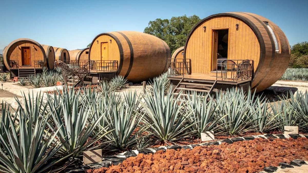 Отель в бочке: в Мексике туристам предлагают пожить на производстве текилы – видео