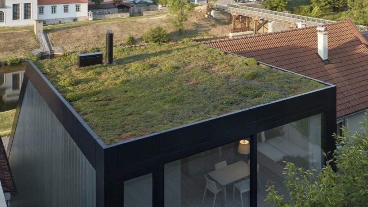 Эко-идея для своего жилья: в Чехии построили домик с зеленой крышей – фото