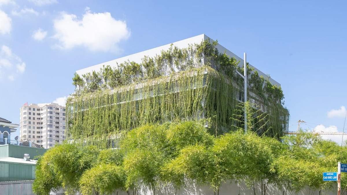 Гавань неймовірного воркспейсу: рослини та затишні робочі місця у новому офісі у В'єтнамі