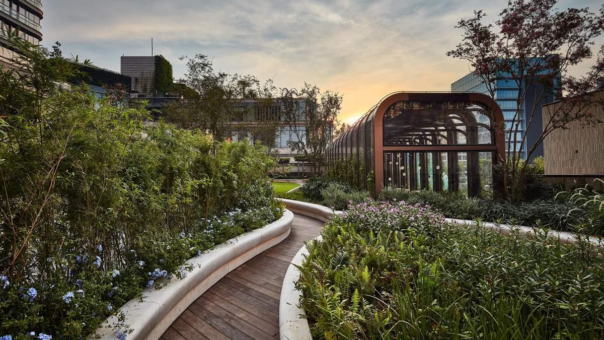 Парк на крыше: захватывающие фото уникального заповедника в сердце Гонконга