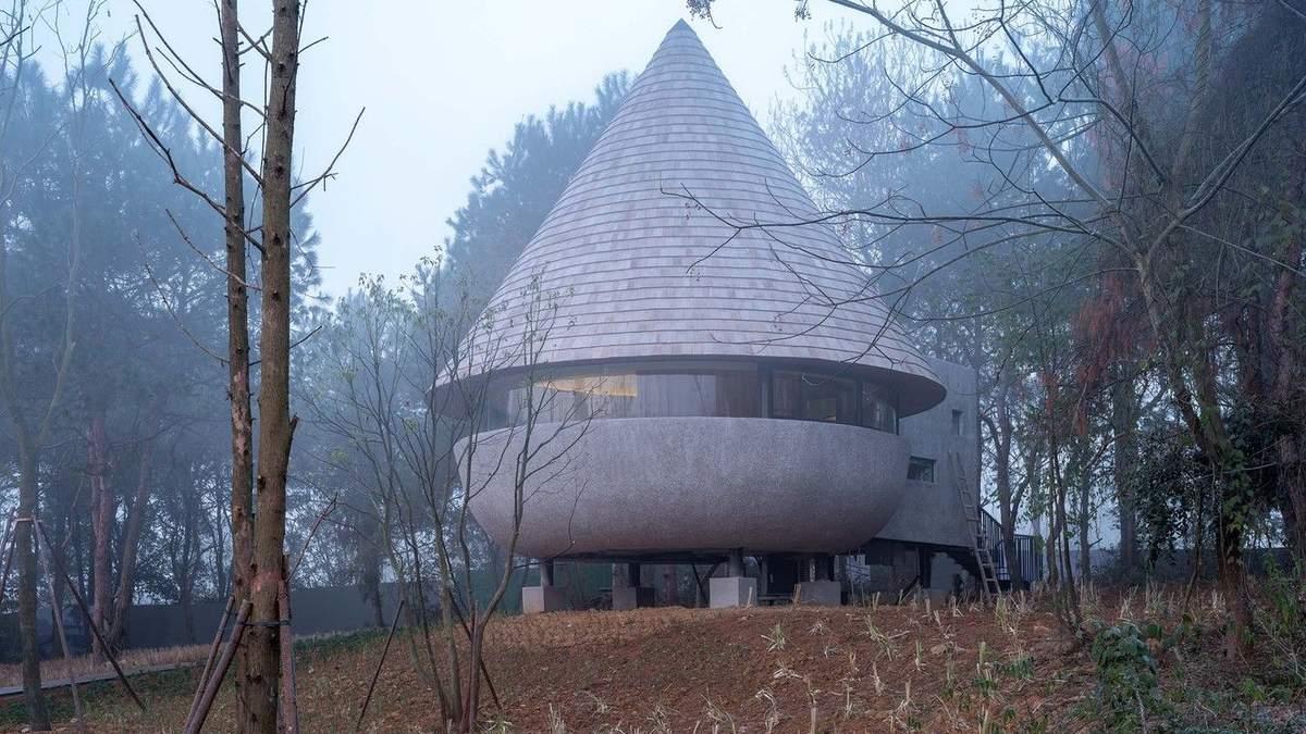 Удивительный гриб: в Китае построили уютный лесной дом