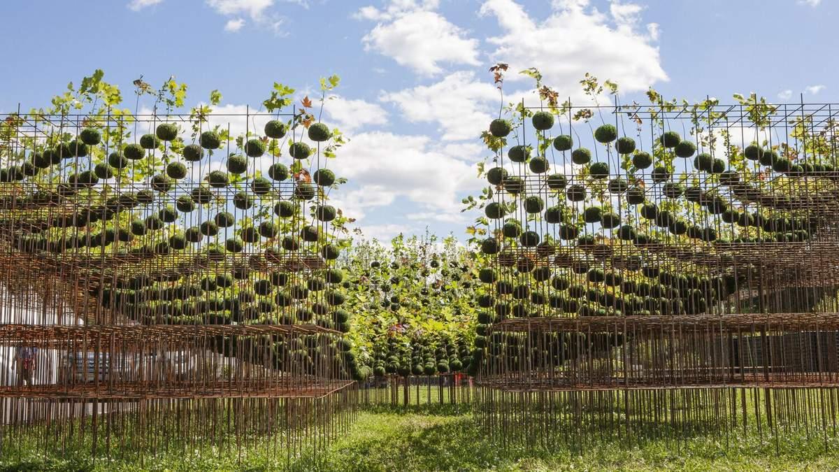 Висячі рослини: у Філадельфії створили фантастичну інсталяцію