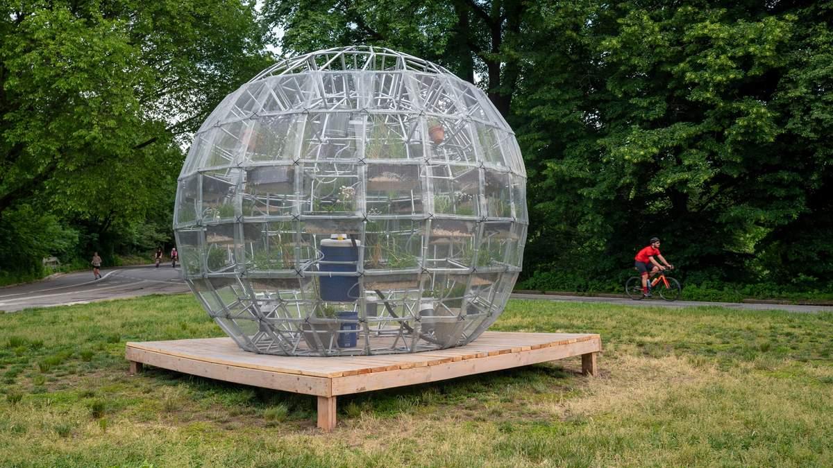 Растительный шар: инсталляция в Нью-Йорке, которая покорила жителей