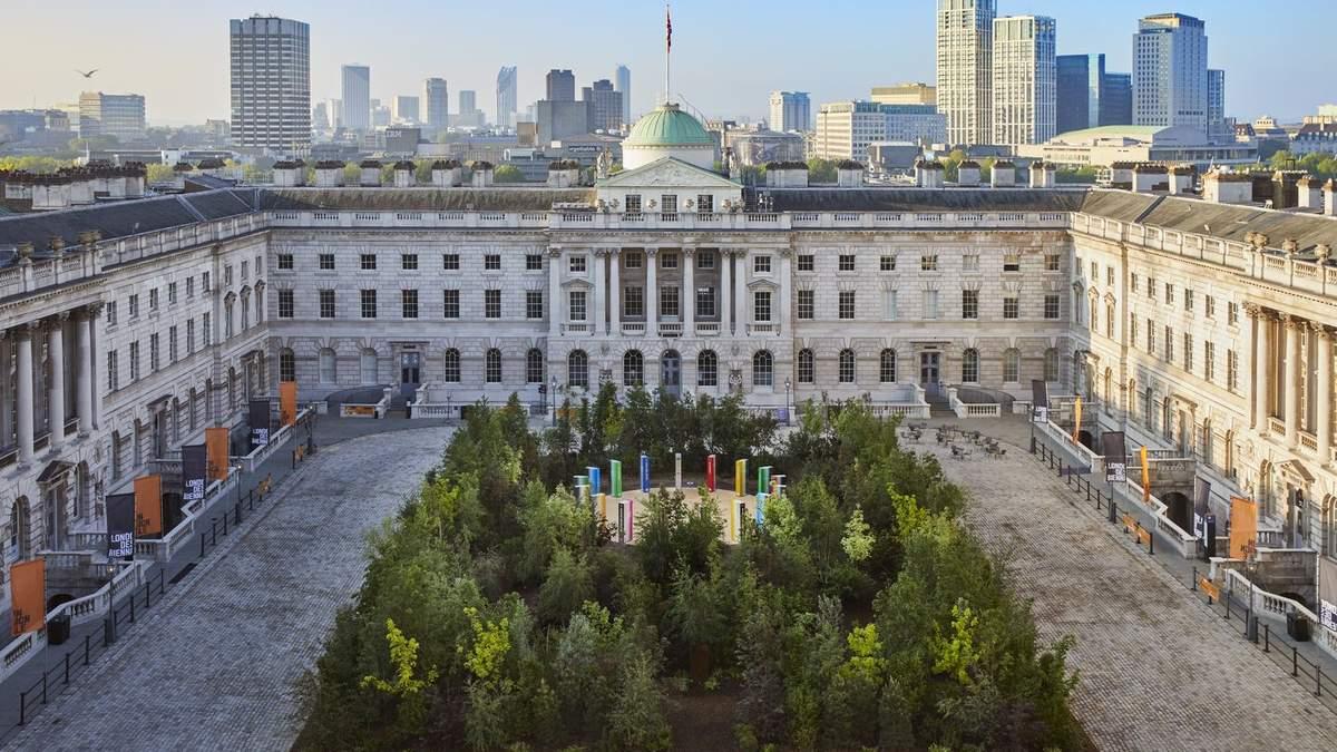 Ліс для змін: дивовижна природна інсталяція в дворі Лондонської бібліотеки