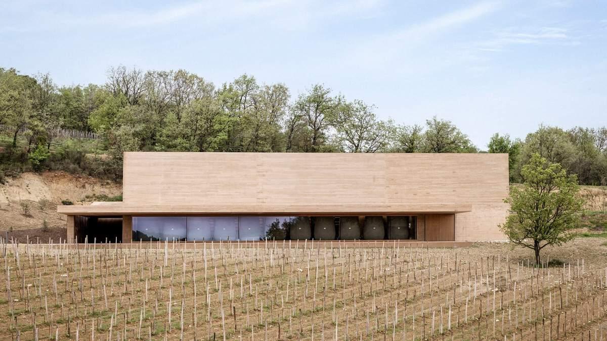 Елегантна виноробня посеред виноградника: промисловий проєкт у Франції