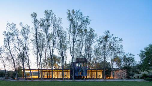 Вокруг деревьев и в гармонии с ландшафтом: фото особого мексиканского ранчо