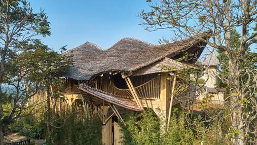 Эко на основе бамбука: в Индонезии представили роскошный вариант сельской резиденции