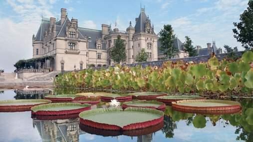Дом богатого Ричи: история и фото самой большой частной усадьбы США
