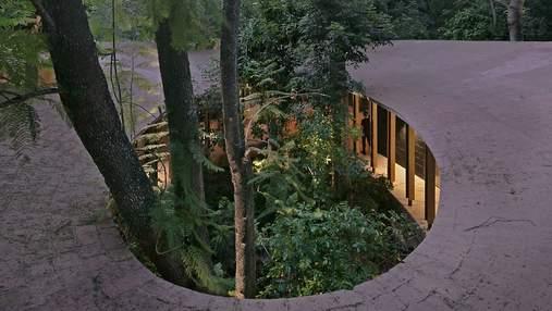 Полная интеграция в природу: в Мексике построили роскошный семейный дом, окутанный зеленью