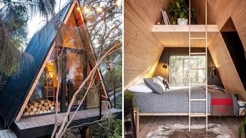 Тайник для детей: в австралийском лесу построили уютную кабину