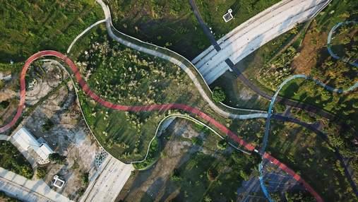Оазис посреди разрухи: рождение парка на месте бывшего аэропорта в Тайване