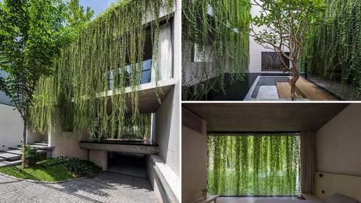 Растения как главный декор: как смягчить бетонный фасад роскошной лианой