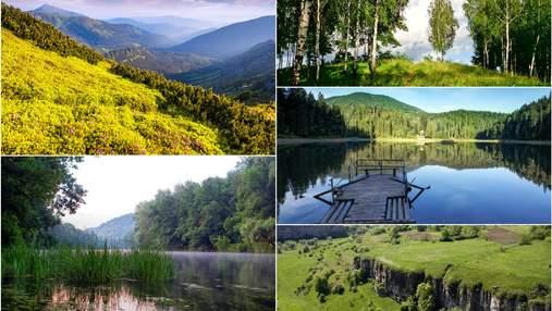 Пышные оазисы: как менялись известные парки Украины