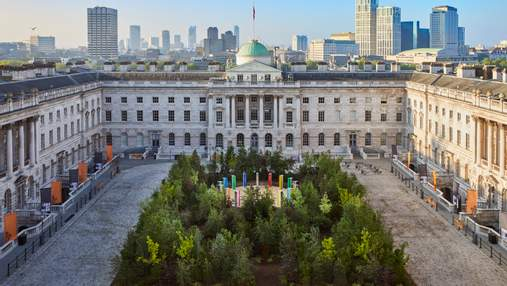 Лес для изменений: удивительная природная инсталляция во дворе Лондонской библиотеки